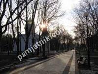 Соломенское кладбище.